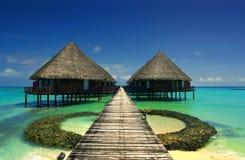 马尔代夫 免版税库存照片