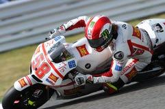 马尔科・西蒙切利本田MOTOGP 2011年 库存照片