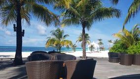 马尔代夫休息室酒吧 免版税库存图片