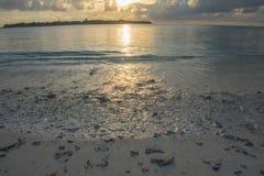 马尔代夫可儿海岛2015年4月 免版税图库摄影