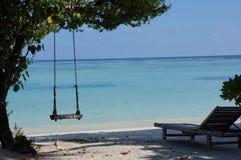 马尔代夫海岛海滩swingset游泳 库存图片