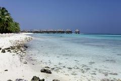 马尔代夫海滩 免版税库存照片
