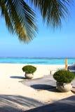 马尔代夫海滩 免版税图库摄影