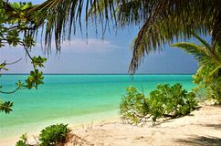 马尔代夫海滩Thoddoo海岛2 免版税库存图片