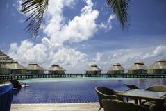 马尔代夫游泳池周围 免版税库存照片