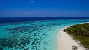 从马尔代夫的热带海岛 库存图片