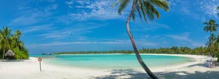 马尔代夫美好的海滩风景全景 免版税图库摄影