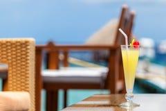 马尔代夫,旅行,假日,鸡尾酒 库存照片