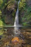 马尾在哥伦比亚河峡谷落 免版税库存照片