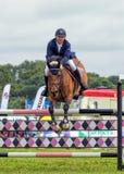 马展示跳跃在Hanbury全国范围的展示的,英国 免版税图库摄影