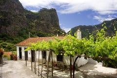 马德拉岛山vii 库存照片