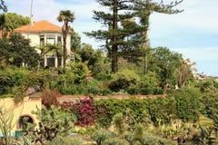 马德拉岛植物园 免版税库存照片