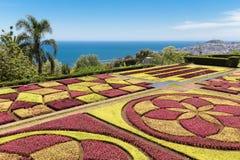 马德拉岛海岛的,葡萄牙植物园丰沙尔 库存图片
