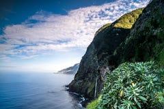 马德拉岛海岛美丽的海岸  免版税图库摄影