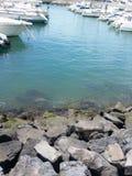 马德拉岛海岛 库存照片