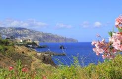 马德拉岛海岸 免版税库存照片