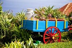 马德拉岛的庭院 免版税库存图片