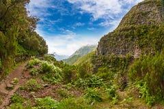 马德拉岛,田园诗风景 图库摄影
