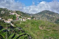 马德拉岛,葡萄牙-远足往Camacha的小山 免版税库存图片