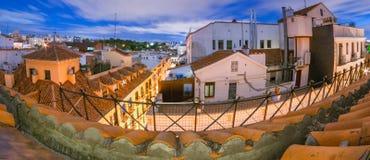 马德里屋顶长的曝光在晚上 小庭院大阳台从一个分开的露台,在街道上的四个故事 免版税库存图片