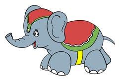 马戏大象 免版税图库摄影