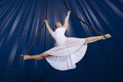 马戏空气体操运动员 免版税库存图片