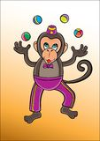 马戏猴子 免版税库存图片