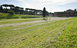 马戏Maximus站点在罗马,意大利 免版税库存图片