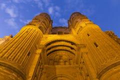 马拉加大教堂 免版税库存照片
