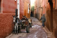 马拉喀什medina摩洛哥s小的街道 库存照片