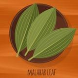 马拉巴尔桂皮叶子平的设计传染媒介象 免版税库存照片