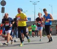 马拉松速度 库存照片