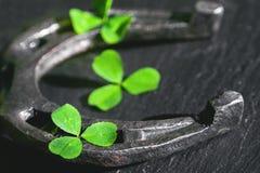 马掌和三叶草在黑石头 免版税库存照片