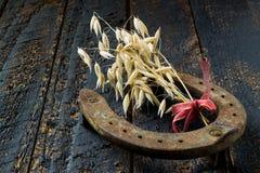 马掌和燕麦-好运和繁荣的标志 库存图片