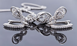 以马掌的形式典雅的银色耳环 库存图片
