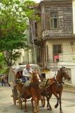 马推车乘驾王子海岛,土耳其 免版税库存图片