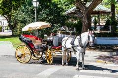 马支架在米哈斯镇,安大路西亚 西班牙 库存照片