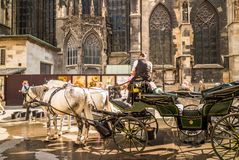 马支架在维也纳 免版税库存照片
