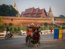 马支架在Lampang 库存图片