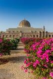 马斯喀特盛大清真寺和它的加尔省几何秀丽  免版税库存照片
