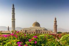 马斯喀特盛大清真寺和它的加尔省几何秀丽  免版税库存图片