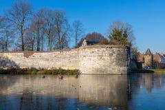 马斯特里赫特市公园在与一个冻池塘的冬天 库存照片