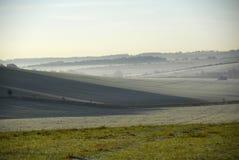马有薄雾的谷视图白色 免版税库存图片