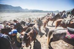马服务 图库摄影