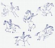 马术运动-显示跳 图库摄影