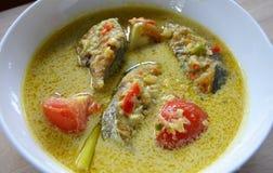 马来的烹调- Masak Lemak慈利Api Ikan Tenggiri 免版税图库摄影