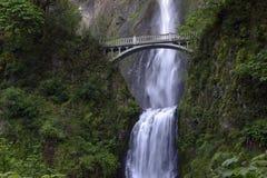 马特诺玛瀑布和脚桥梁在豪华的绿色设置在胡德山和波特兰俄勒冈附近在哥伦比亚河狼吞虎咽地区 免版税图库摄影