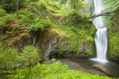 马特诺玛瀑布在哥伦比亚河峡谷,俄勒冈,美国 免版税库存照片