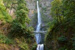 马特诺玛瀑布-哥伦比亚河峡谷 免版税库存照片
