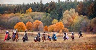 马狩猎 免版税库存照片